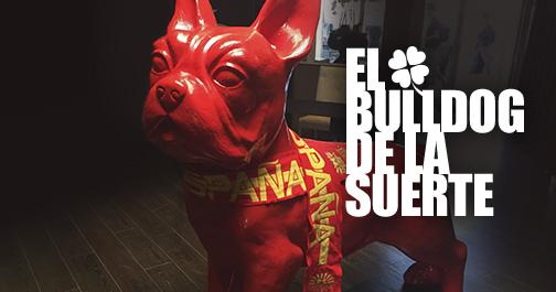 el_bulldog_de_la_suerte